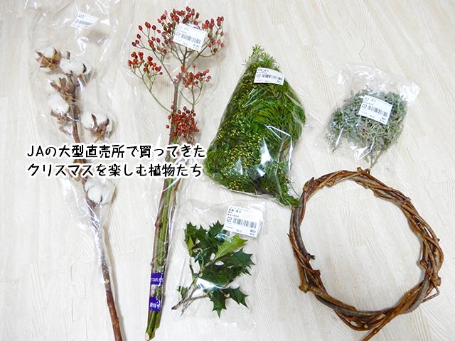 JAの大型直売所で買ってきたクリスマスを楽しむ植物たち