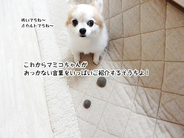 これからマミコちゃんがおっかない言葉をいっぱいご紹介するそうちよ!