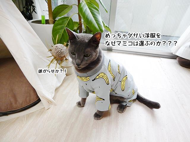 めっちゃダサい洋服をなぜマミコは選ぶのか???