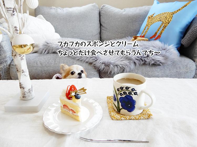 フカフカのスポンジとクリームちょっとだけ食べさせてもらうんでち~