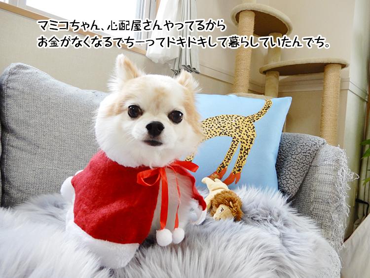 マミコちゃん、心配屋さんやってるからお金がなくなるでちーってドキドキして暮らしていたんでち。