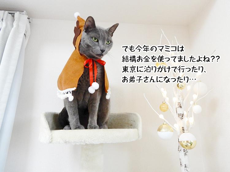 でも今年のマミコは結構お金を使ってましたよね??東京に泊りがけで行ったり、お弟子さんになったり…