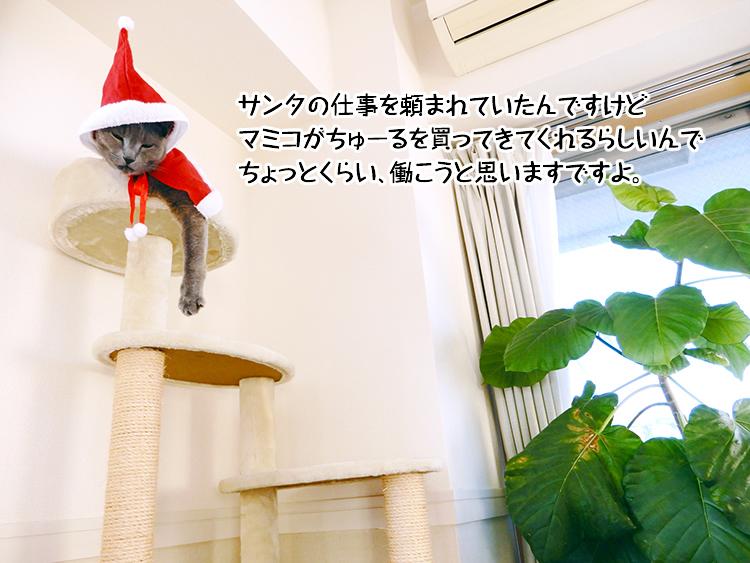 サンタの仕事を頼まれていたんですけどマミコがちゅーるを買ってきてくれるらしいんでちょっとくらい働こうと思いますですよ。