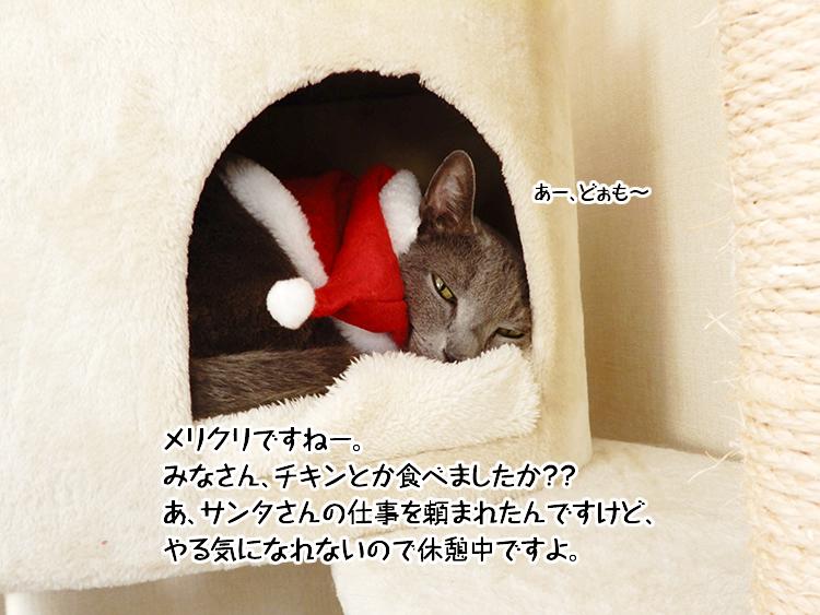 メリクリですねー。みなさん、チキンとか食べましたか??あ、サンタさんの仕事を頼まれましたが、やる気になれないので休憩中ですよ。