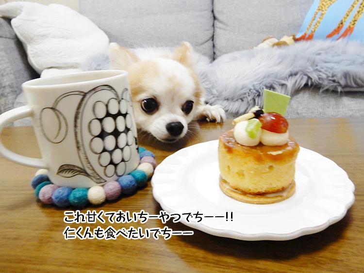 これ甘くておいちーやつでちーー!!仁くんも食べたいでちーー