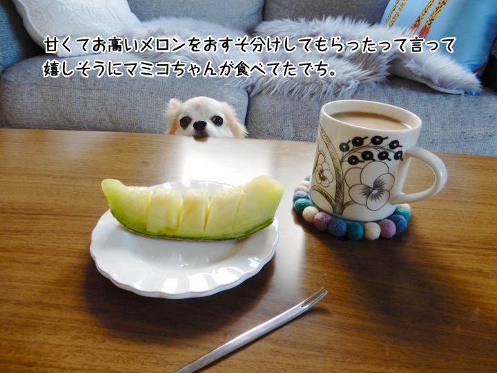 甘くてお高いメロンをおすそ分けしてもらったって言って嬉しそうにマミコちゃんが食べてたでち。