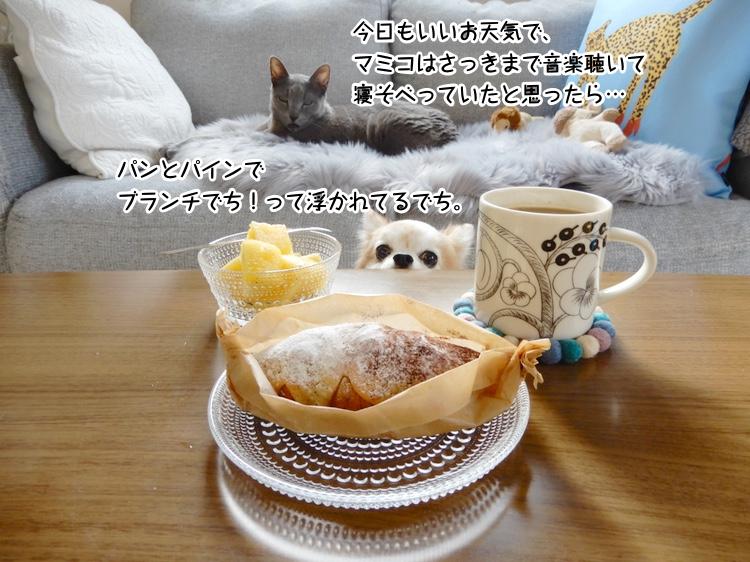 パンとパインでブランチでち!って浮かれてるでち。