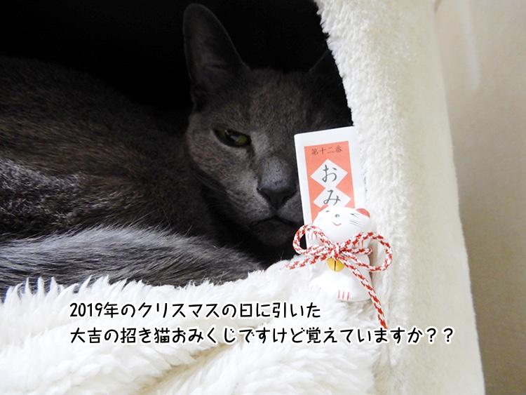 2019年のクリスマスの日に引いた大吉の招き猫おみくじですけど覚えていますか??