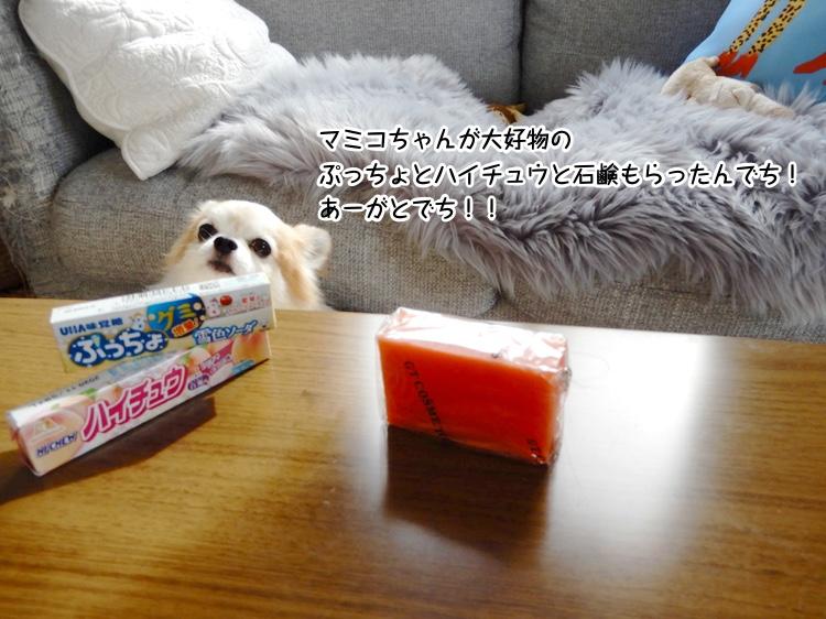 マミコちゃんが大好物のぷっちょとハイチュウと石鹸もらったんでち!あーがとでち!!