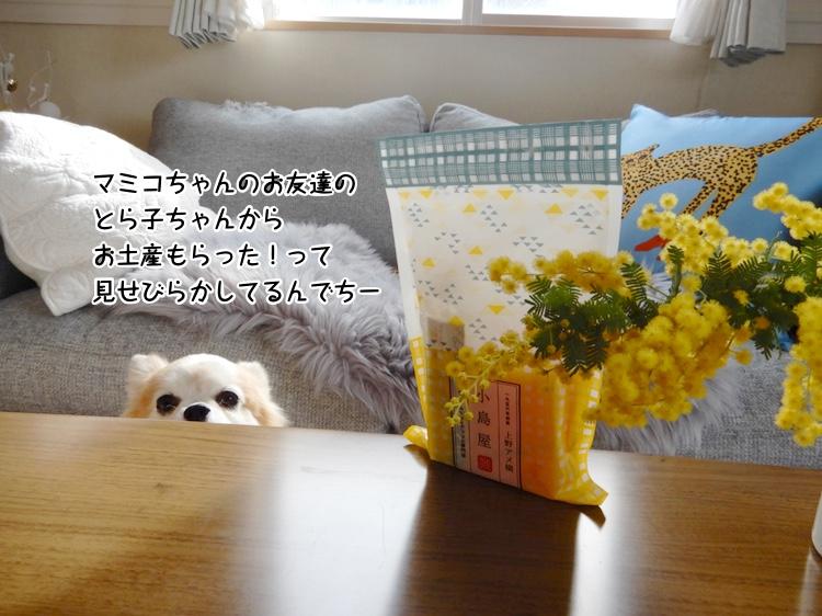 マミコちゃんのお友達の とら子ちゃんから お土産もらった!って見せびらかしてるんでちー