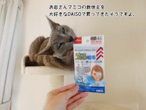 お岩さんマミコの救世主を大好きなDAISOで買ってきたそうですよ。