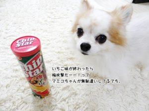 いちご味が終わったら梅攻撃だーー!ってマミコちゃんが無駄遣いしてるでち。
