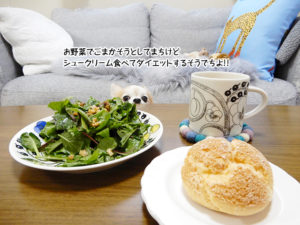 お野菜でごまかそうとしてまちけどシュークリーム食べてダイエットするそうでちよ!!