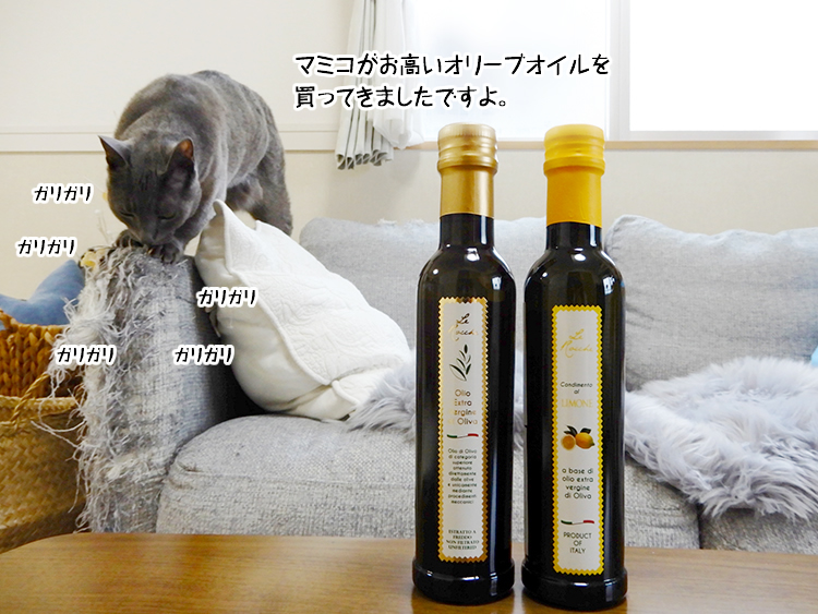 マミコがお高いオリーブオイルを買ってきましたですよ。