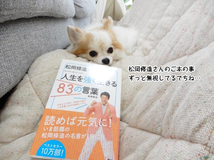 松岡修造さんのご本の事ずっと無視してるでちね…