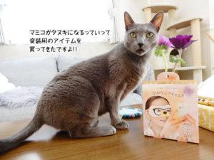 マミコがタヌキになるっていって変装用のアイテムを買ってきたですよ!!
