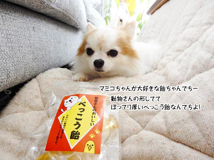 マミコちゃんが大好きな飴ちゃんでちー。動物さんの形しててぽってり厚いべっこう飴なんでちよ!