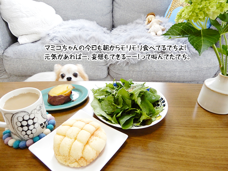 マミコちゃんの今日も朝からモリモリ食べてるでちよ!元気があればー、妄想もできるーー!って叫んでたでち。
