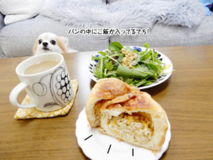 パンの中にご飯が入ってるでち!