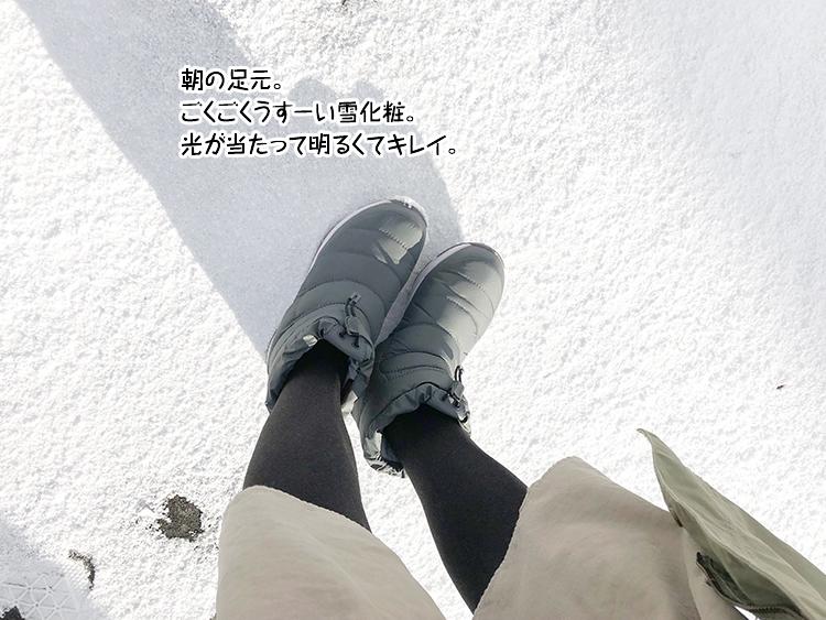 朝の足元。ごくごくうすーい雪化粧。光が当たって明るくてキレイ。
