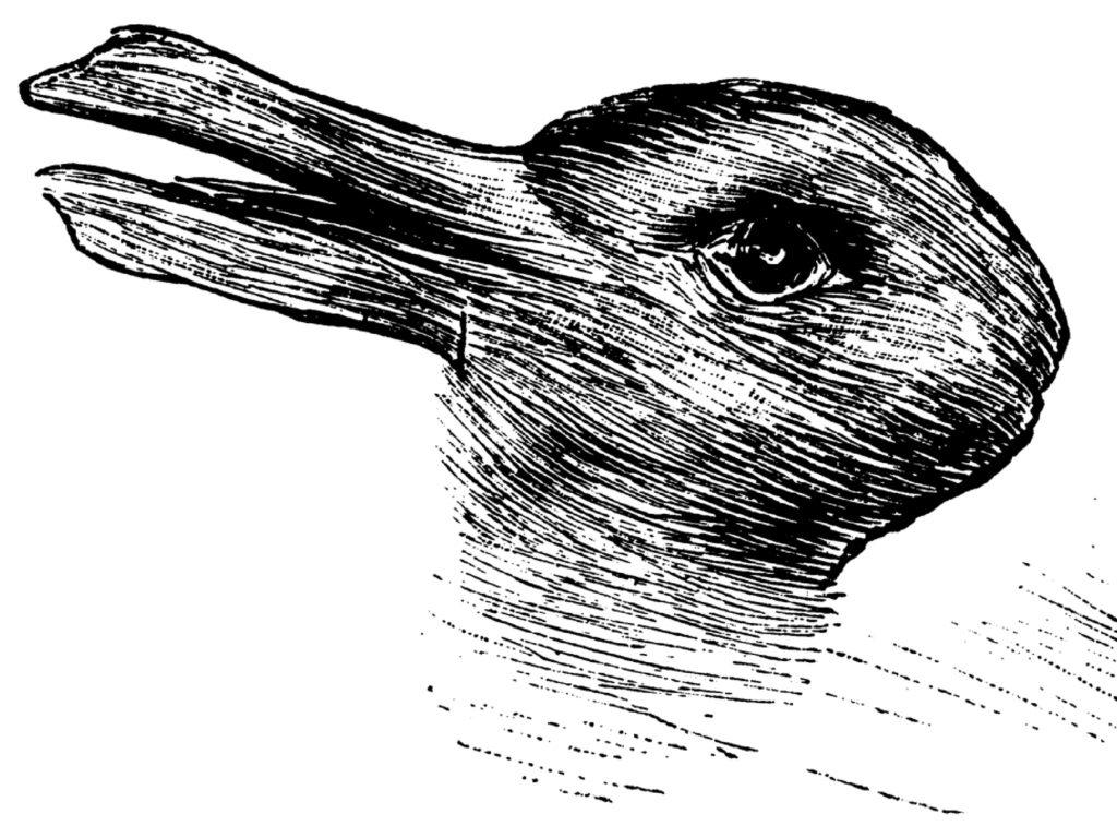 アヒルとウサギの騙し絵