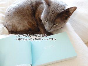 マミコがはしゃいで注文した一緒にしたいこと100のノートですね