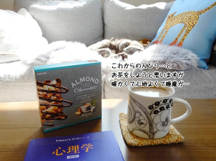 これからのんびり…と お茶をしようと思いますが暖かくて心地よくて睡魔が…