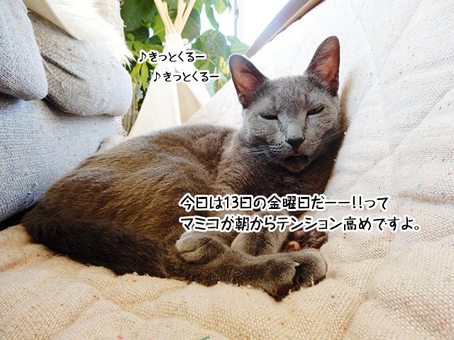 今日は13日の金曜日だーー!!ってマミコが朝からテンション高めですよ。