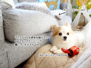 マミコちゃんが資料を読んでいておもしろいでちーー!!って騒いでいたんでちよね。