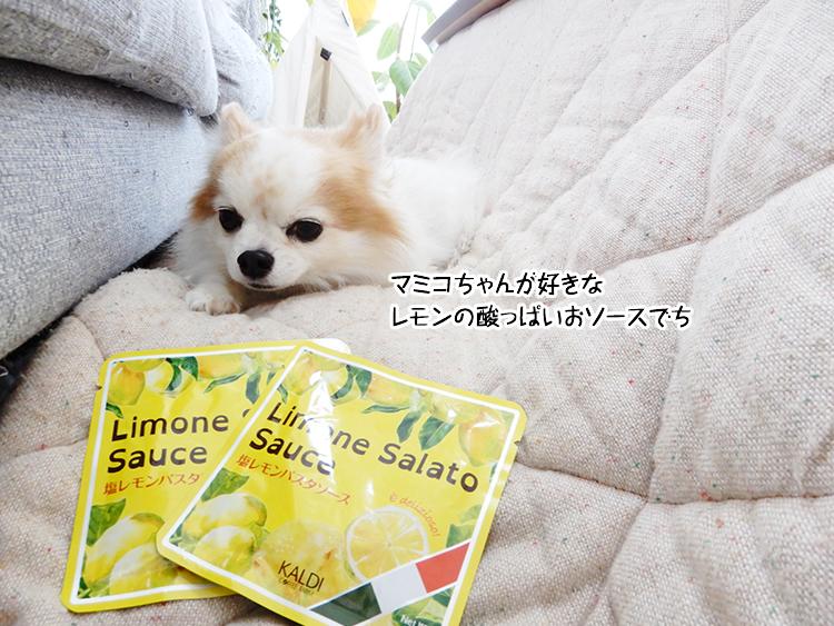 マミコちゃんが好きなレモンの酸っぱいおソースでち