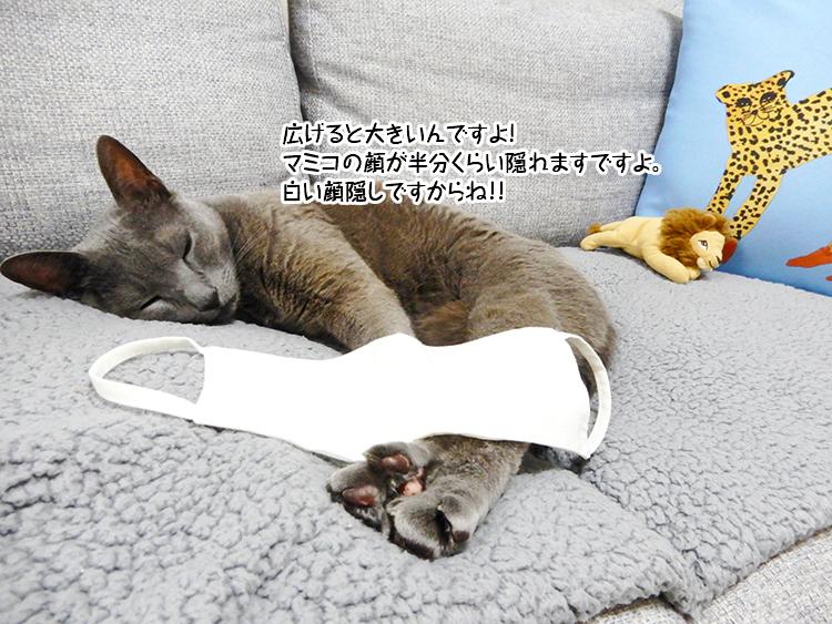 広げると大きいんですよ!マミコの顔が半分くらい隠れますですよ。白い顔隠しですからね!!