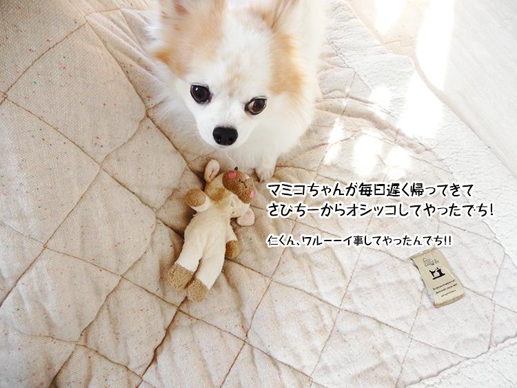 マミコちゃんが毎日遅く帰ってきてさびちーからオシッコしてやったでち!
