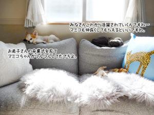 お弟子さんの卒業式を見てマミコちゃんがウルウルしてたでちよ。みなさんこれから活躍されていくんですね~マミコも仲良くしてもらえるといいですね。