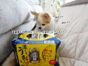 富美男ちゃんのレモンサワーが変わったでちか??