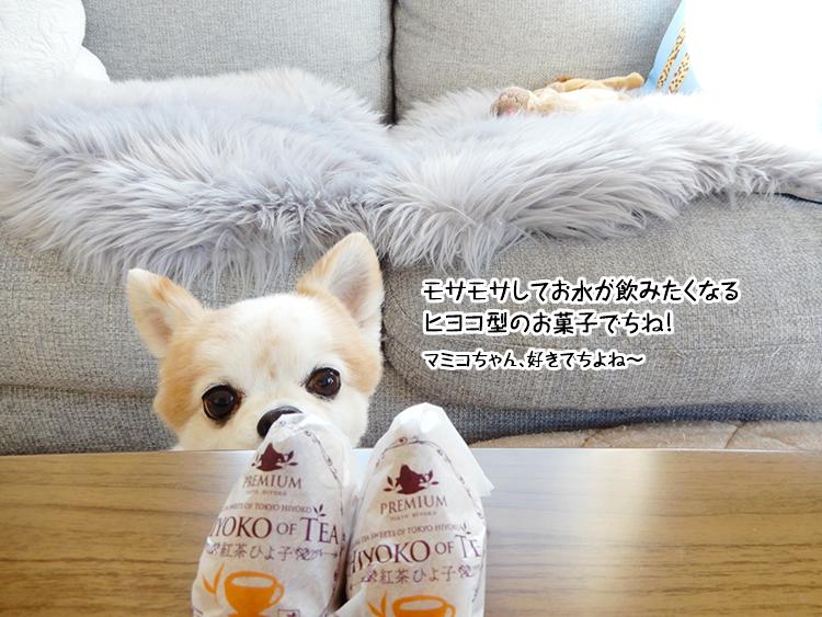 モサモサしてお水が飲みたくなるヒヨコ型のお菓子でちね!