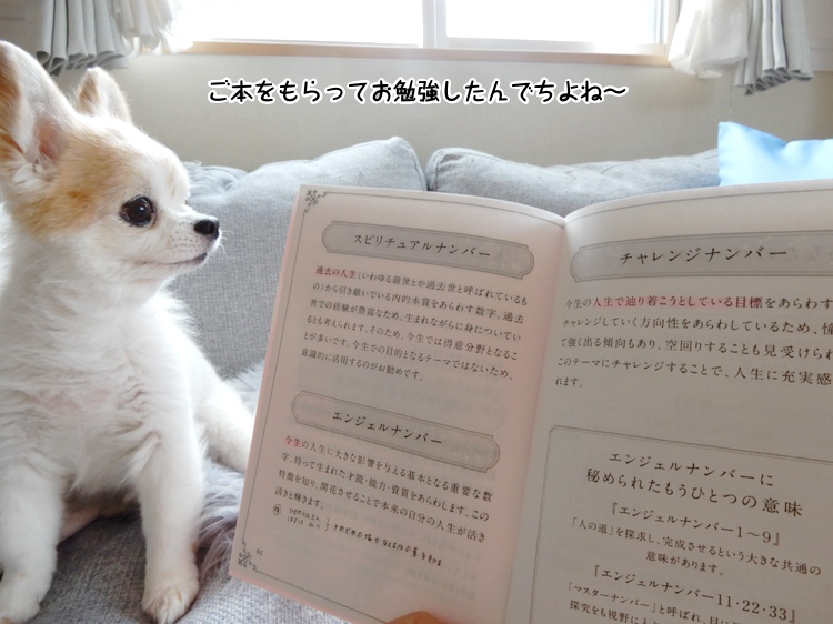 ご本をもらってお勉強したんでちよね〜