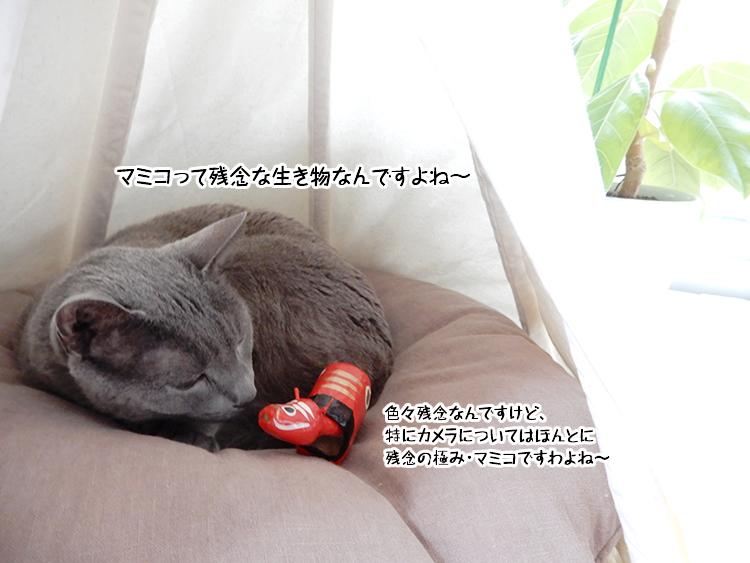 マミコって残念な生き物なんですよね~色々残念なんですけど、特にカメラについてはほんと 残念の極み・マミコですわよね~