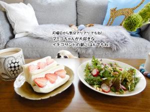 マミコちゃんが大好きなイチゴサンドの朝ごはんでちね!