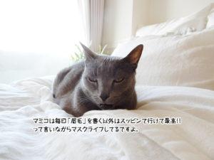 マミコは毎日「眉毛」を書く以外はスッピンで行けて最高!!って言いながらマスクライフしてるですよ。