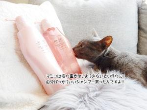 マミコは毛の量がオレより少ないというのに自分ばっかりいいシャンプー買ったんですよ!!
