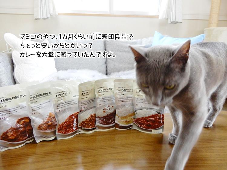 マミコのやつ、1カ月くらい前に無印良品でちょっと安いからとかいってカレーを大量に買っていたんですよ。