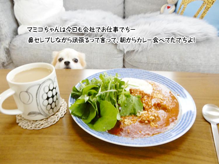 マミコちゃんは朝カレーでち