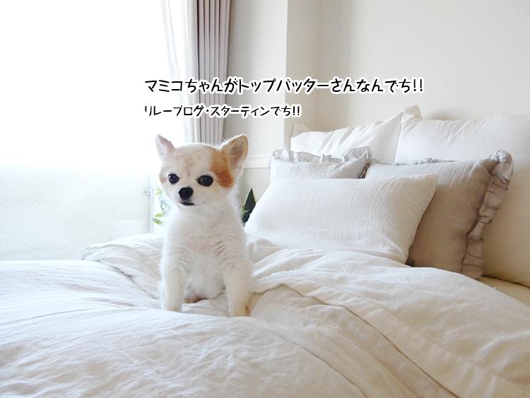 マミコちゃんがトップバッターさんなんでち!!