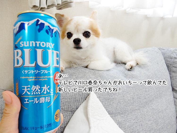 あ… テレビで川口春奈ちゃんがおいちーって飲んでた 新しいビール買ったでちね!