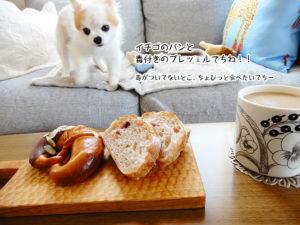 イチゴのパンと毒付きのプレッェルでちね!!