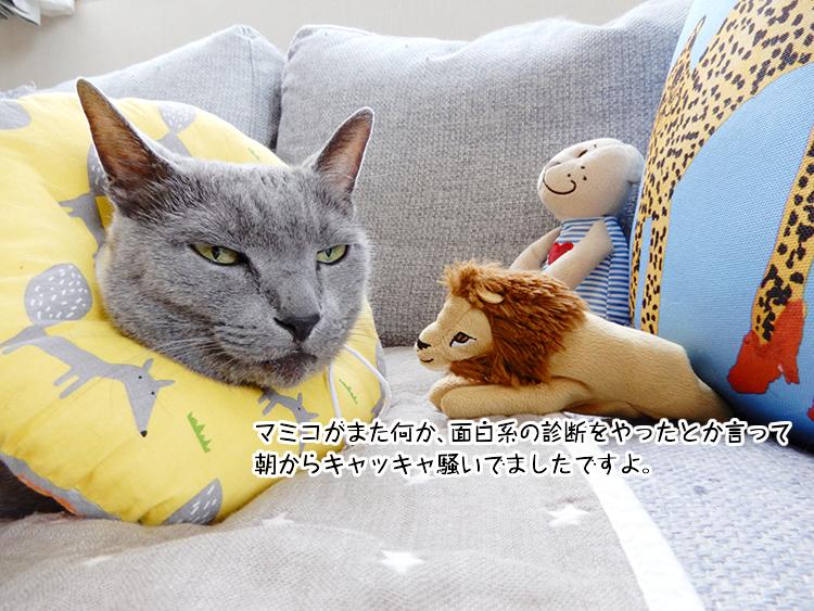 マミコがまた何か、面白系の診断をやったとか言って朝からキャッキャ騒いでましたですよ。