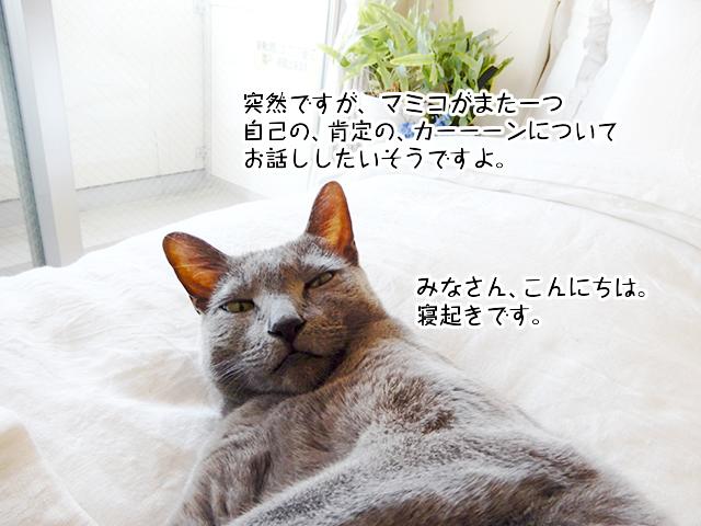 突然ですがマミコがまた一つ自己の、肯定の、カーーーンについてお話ししたいそうですよ。