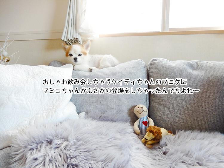 おしゃれ飲み会しちゃうケイティちゃんのブログにマミコちゃんがまさかの登場をしちゃったんでちよね~