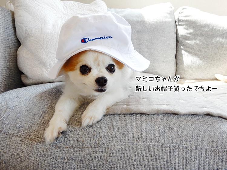 新しい帽子とソファーとお散歩の暖かい時間と。