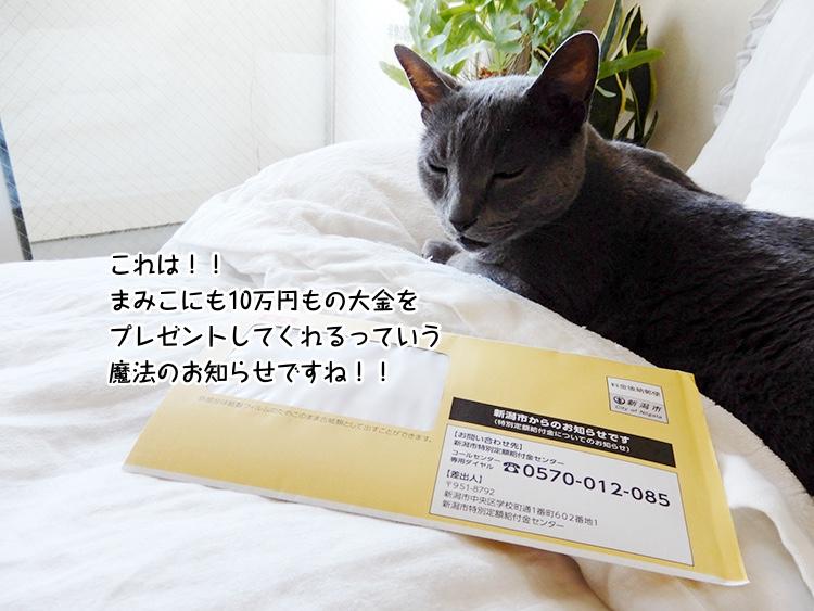 これは!!まみこにも10万円もの大金を プレゼントしてくれるっていう魔法のお知らせですね!!